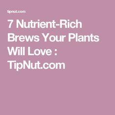 7 Nutrient-Rich Brews Your Plants Will Love : TipNut.com
