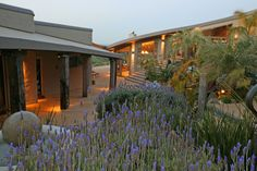 Delamore Lodge Weddings, Waiheke Island www.theweddingcompany.co.nz