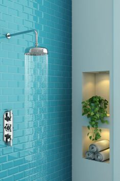 A bathroom plant placed in an alcove next to a traditional fixed head shower Shower Hose, Shower Valve, Landscaping Tips, Front Yard Landscaping, Types Of Plumbing, Plumbing Installation, Fixed Shower Head, Shower Accessories, Bathroom Plants