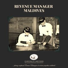 New Job Opening: Revenue Manager, Maldives in Maldives Apply Online, Hotels And Resorts, Maldives, Appointments, Searching, Career, Management, How To Apply, Group