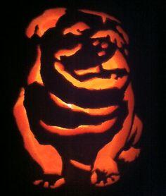 Bulldog   disguised as a Jack-o-lantern for Halloween.