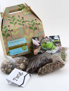 Terrarium Kit - DIY Terrarium Kits   Gardener's Supply