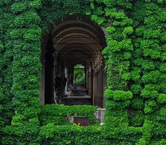 images about The secret garden on Pinterest The