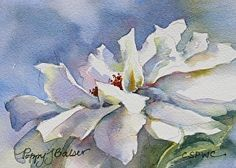 Rose Before Frost by Poppy Balser Watercolor ~ 5 x 7