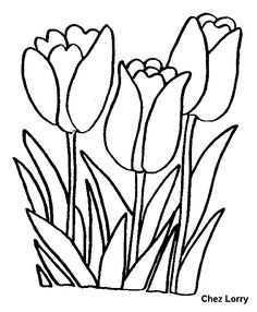 46 Best Learning Images On Pinterest In 2018 Coloring Pages