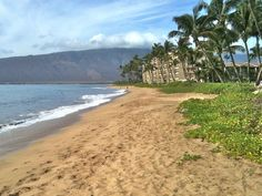 Kihei Maui. This beach was right across the street from our hotel!