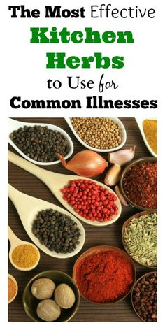 The Most Effective Kitchen Herbs To Use For Common Illnesses