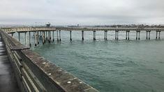 Ocean Beach pier looking back toward the T. #OceanBeach #SanDiego #piers #SoCal