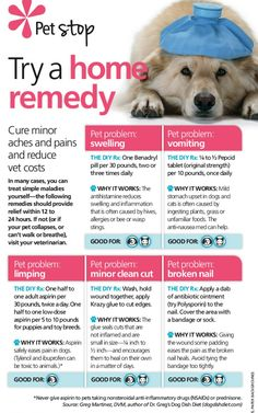 home remedies for dogs-this is something I need to know. vets are expensive
