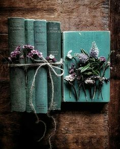 Old books are rare treasures. Book Aesthetic, Aesthetic Pictures, Aesthetic Plants, Beach Aesthetic, Old Books, Vintage Books, Photos Amoureux, Book Flowers, Deco Floral
