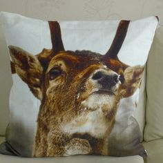 I made 2 pillows for my daughter. Day Wishes, Goats, To My Daughter, Cow, Pillows, Awesome Stuff, Creative, Animals, Shopping