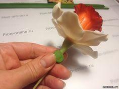 """Цветок """"Нарцисс"""" из полимерной глины, мастер класс. Часть 2 - Цветы из полимерной глины - Полимерная глина - Каталог статей - Рукодел.TV"""