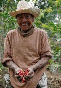 Filiberto, Coffee Farmer; Guatemala