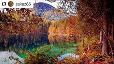 C'erano tante splendide foto questa settimana, ma dopo aver visto lo scatto fiabesco di @zakaz86 non ho avuto dubbi. Seguitelo, le sue foto sono sempre speciali! ・・・ #reflections 🍁☔🗻 #fvglive #cameranalyst #igersudine #outdoorlovers #igpic_italia #thehub_fvg #alpine #foliage #loves_friuliveneziagiulia #loves_united_friuli #volgofriuliveneziagiulia #wonderful_places #mycornerofitaly #loves_madeinitaly #ilventodelfreeul #top_italia_photo #italia_super_pics #italy_photolovers #vivo_italia… Painting, Travel, Instagram, Italia, Paintings, Viajes, Traveling, Draw, Drawings