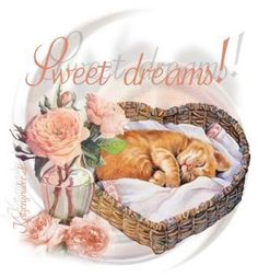 Good night sister and all, sweet dreams♥★♥. Good Night Sister, Good Night Sweet Dreams, Good Night Image, Good Morning Good Night, Good Night Greetings, Good Night Messages, Night Wishes, Nighty Night, Sweet Dreams Pictures