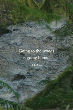 Going to the woods is going home. ~ John Muir Going to the woods is going home. ~ John Muir The post Going to the woods is going home. ~ John Muir appeared first on Pink Unicorn. Forest Quotes, Quotes About Forest, Quotes About Trees, Citation Nature, John Muir Quotes, Nature Quotes Adventure, Quotes About Adventure, Into The Woods Quotes, Vida Natural