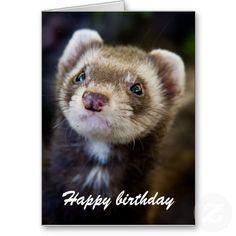 Ferret birthday card #cute #animals #ferrets #birthday available at http://www.zazzle.com/ferret_birthday_card-137121596088130457?rf=238464442738264151
