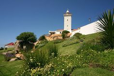 Lighthouse in Mossel Bay- South Africa Luxury Bus, Port Elizabeth, East London, Lighthouses, Cape Town, South Africa, Around The Worlds, Tours, Mansions