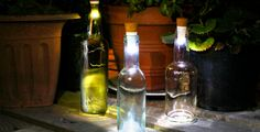 This Cork Lets Your Empties Light Up Your Home