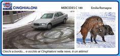 47_CINGHIALONI #albapolare #rallydeglieroi #sonouneroe @RobertoCattone http://albapolare2016.blogspot.it/p/catalogo-degli-eroi.html