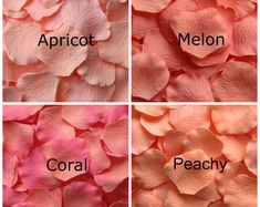 Blue Rose Petals, 17 Shades of Blue Silk Rose Petals, Fake Rose Petals, rose petals for aisle runners, flower girl petals Shades Of Peach, Color Shades, Colour Pallete, Colour Schemes, Peach Colour Combinations, Fake Rose Petals, Pink Petals, Monochrome Color, Color Psychology