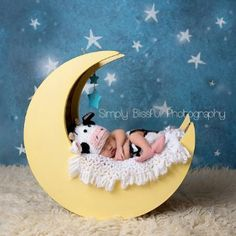 Cow Jumped Over the Moon Newborn pictures