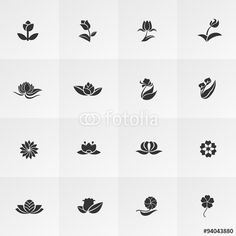 Vector: Silhouette fantasy logo flower lotus rose tulip sunflower daisy clover leaf icon set, create by vector