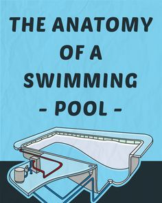 The Anatomy of a Swimming Pool