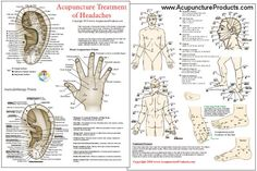 A chart for Acupuncturists, Massage Therapists and for Self Treatment These points can be stimulated by acupressure, massage and acupuncture...
