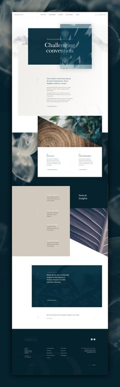 Unused Homepage Concept – interesting grid layout design by Kylie Timpani.
