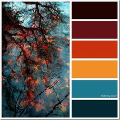 15 Most Popular Fall Color Palette Collection For Amazing Home Interior Ideas Harmony Fall Color Schemes Palette # Shades Fall Color Schemes, Color Schemes Colour Palettes, Fall Color Palette, Colour Pallette, Color Combos, Orange Color Schemes, Winter Color Palettes, Decorating Color Schemes, Popular Color Schemes