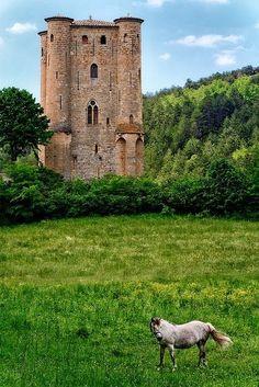 Medieval Castle, Ariege, France photo via vonnie