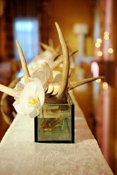 Antlers Centerpiece
