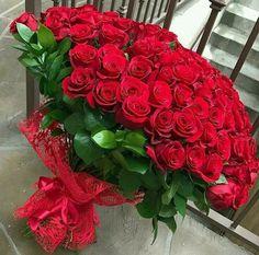 Beautiful Rose Flowers, Wonderful Flowers, Flowers For You, Red Flowers, Red Roses, Red Rose Arrangements, Beautiful Flower Arrangements, Happy Birthday Flower, Luxury Flowers