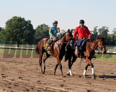 American Pharoah with Victor Espinoza win the 48th Running of the Haskell Invitational at Monmouth Park on August 2, 2015. Photo By: Chad B. Harmon