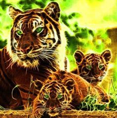Awesome Tiger Art