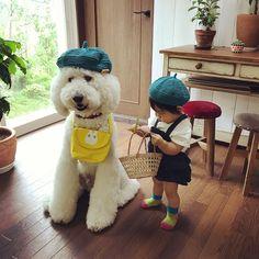 . #babychu さんのお洋服着て一緒にお散歩(*^_^*). おちりふりふりで可愛いね。. お腹がぽこりんなのはナイショ(笑). . ―――――――――――――. フリルサロペット☆デニムインディゴ 1歳1ヶ月★80cm×9.5kg. @babychu2014. トップス:70-80サイズ (#mimipoupons ). ―――――――――――――. #べびちゅモデル. #babychuモデル. #standardpoodle #poodlesofinstagram #スタンダードプードル #whitepoodle #いぬすたぐらむ #大型犬と子供 #poodle #大型犬との暮らし #dogstagram #いぬのいる生活 #わんこなしでは生きていけません会 #犬バカ部 #1歳 #赤ちゃんと犬 #コドモノ #ママリ #ベビフル #キズナ #いこーよ #どんぐり帽 #モデル #お散歩 #サロペット #可愛い