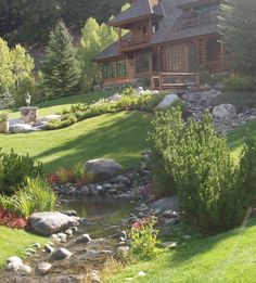Define an open yard create landscape perimeter with trees for Open yard landscaping ideas