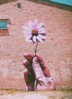 أرسم وردة على الجدران ستزهر ألف من حقول البسمات فوق شفاه المارين !