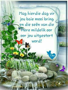 Lekker Dag, Blessed Week, Evening Greetings, Afrikaanse Quotes, Goeie More, Happy Birthday Pictures, Diy Photo, Good Morning, Things To Think About