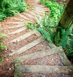 The steps down to Winghaven--circular wooden steps up a steep slope, filled with either rock, soil or a mixture of both.