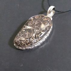 "Boho Turtella Jasper Necklace Beautiful large free form oval jasper.  Bezel set in silver plate. Just over 2"" long. On long black cord. Knot to your perfect length. NWOT, gift boxed. Jewelry Necklaces"