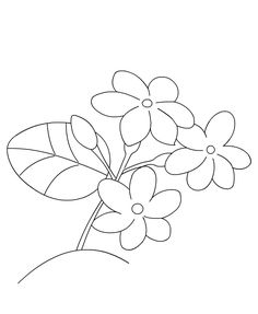 Jasmine Flower Drawings | join-dots