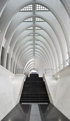 architect Santiago Calatrava / Liège Guillemins TGV Station in Liège, Belgium / photo by Michaël Jacobs Architecture Design, Beautiful Architecture, Beautiful Buildings, Contemporary Architecture, Installation Architecture, Building Architecture, Chinese Architecture, Architecture Office, Futuristic Architecture