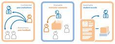 TEAMMATES peer feedback system – review