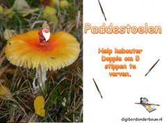 Digibordles: Paddestoelen: help kabouter Doppie steeds 5 stippen op de paddestoel te maken. http://www.digibordonderbouw.nl/index.php/themas/herfst/paddestoelen/viewcategory/171-paddestoelen-digibordlessen