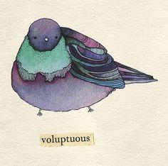 This made me laugh because describing a bird as voluptuous is so odd