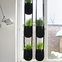 hanging plant bags - indoor gardening great to put in a classroom