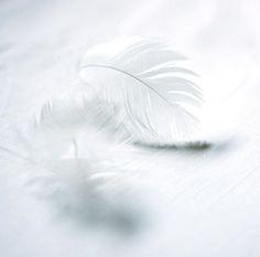 light 'n airy - photo via design-dautore.com on fb