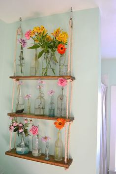 pully+shelves | Except that I put found bottles and flowers on it. Sorry monkeys.